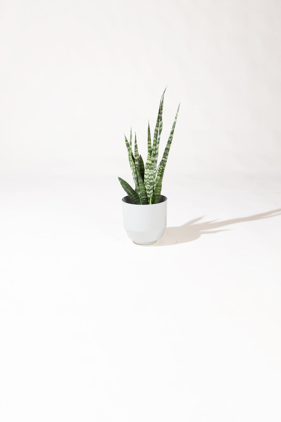 "8"" Spun Planter - Pale Gray"