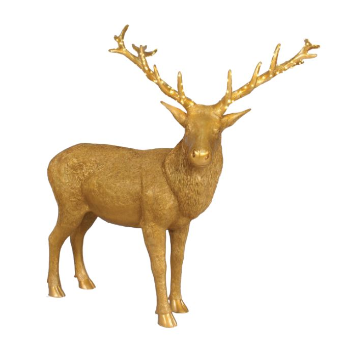 Golden Stag