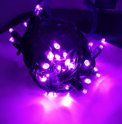 Purple LED 5MM