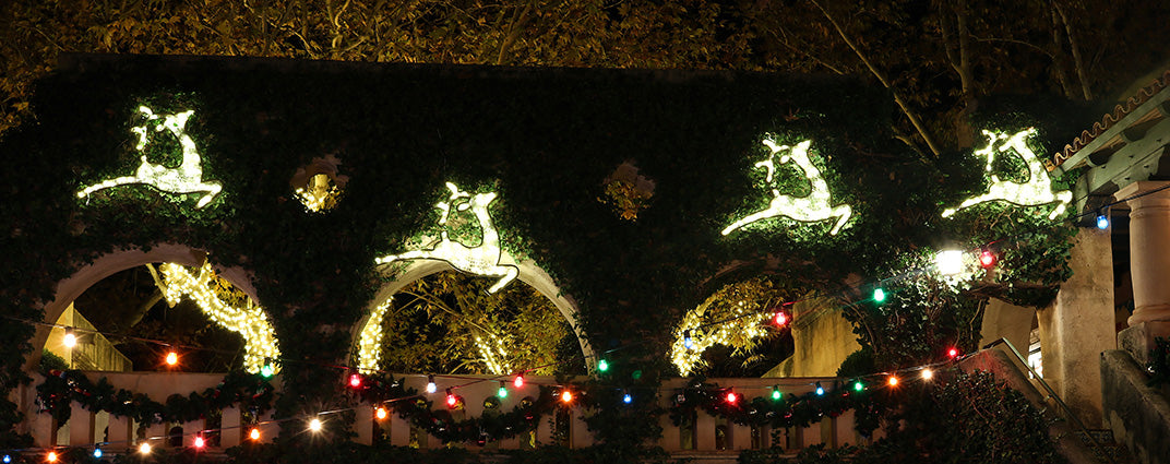 Illuminated 2D Reindeer