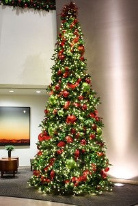Jolly Decor Christmas Tree Package 7.5FT-15FT Sizes