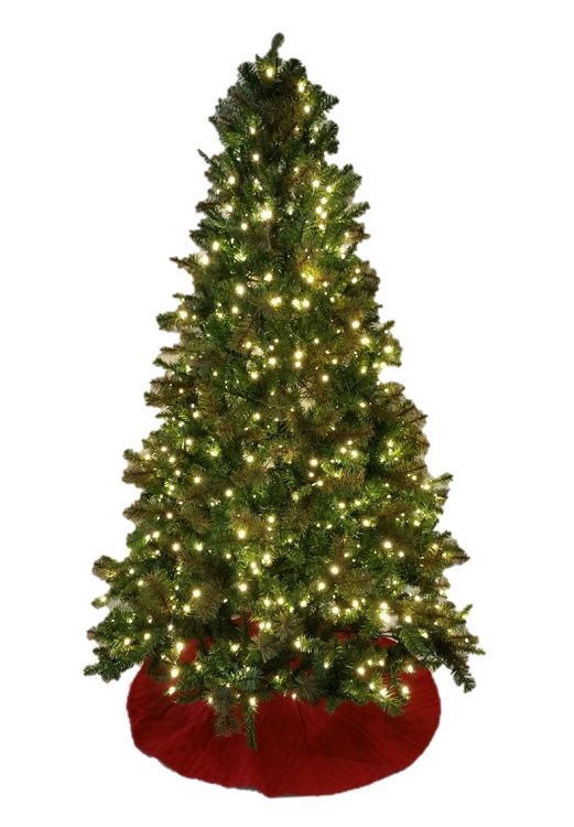Sable Fir Christmas Tree