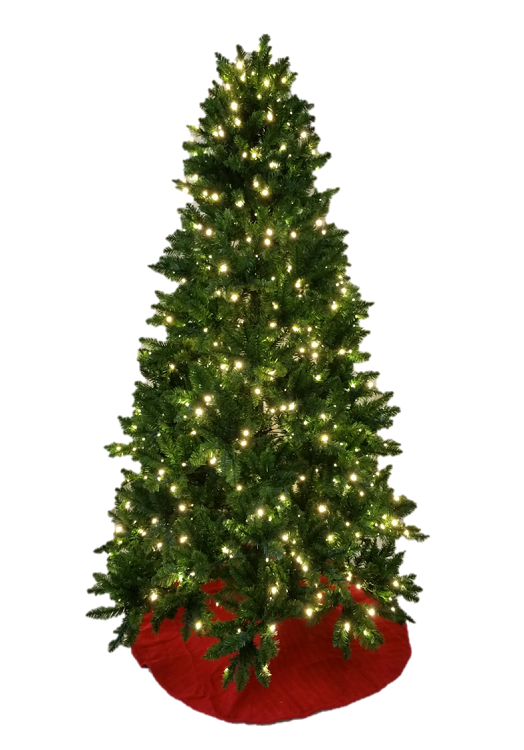 Sequoia Spruce Christmas Tree - 7.5' or 9.5FT Size