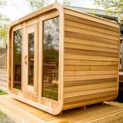 dundalk luna sauna clear wood2