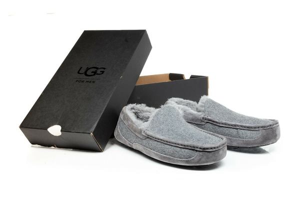 UGG Ascot Wool Suede Slippers - with box