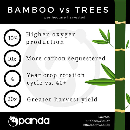 Bamboo is Better: Bamboo vs. Trees Infographic di WearPanda