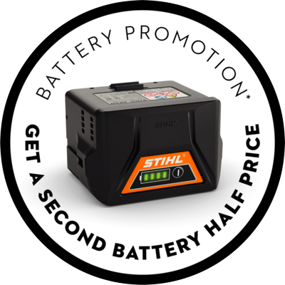 battery promotion.png