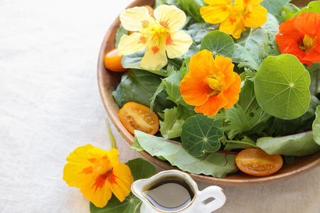nasturtium flowers in salad