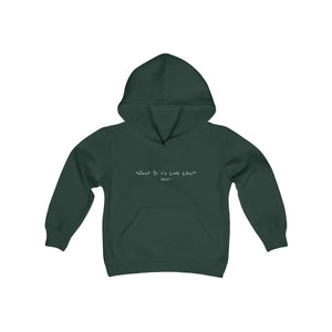 What Yo 1's Look Like Youth Hooded Sweatshirt (White Lettering)