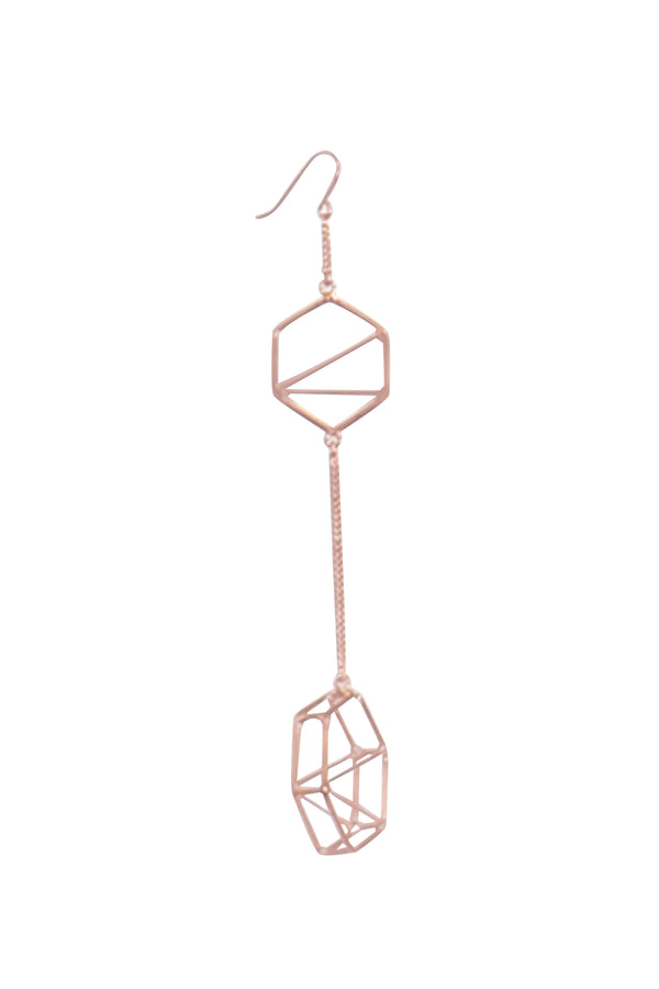 Finite Drop Earring