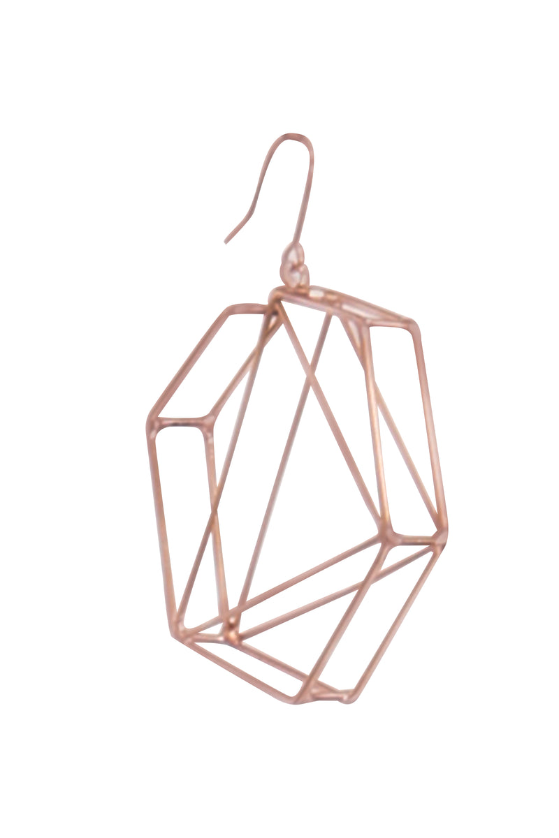 Finite Hexagon Earring