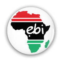 Ebi Signature Logo Pin