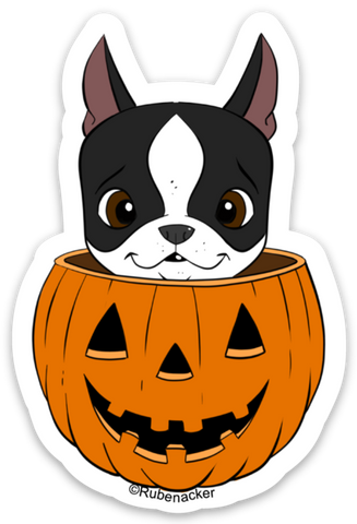 Boston terrier vinyl Halloween sticker, boston terrier stickers, boston terrier gift, dog stickers, Halloween stickers, Pumpkin sticker