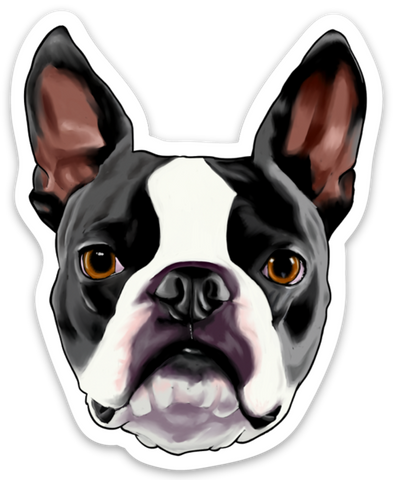 Boston terrier face vinyl sticker
