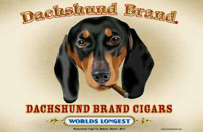 Dachshund Cigar Label magnet