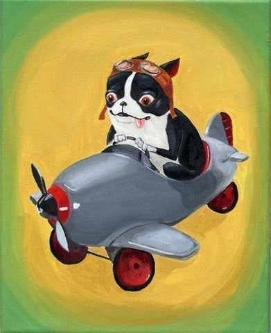 Boston Terrier in a Pedal Plane Print