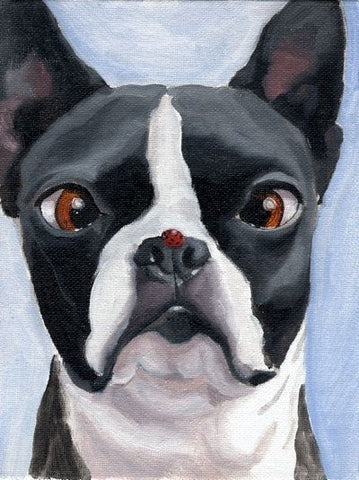 Boston Terrier and the Ladybug Print, Boston Terrier art print from oil painting, Boston Terrier gift