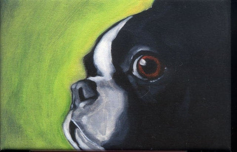 Boston Terrier gift, Boston terrier Cute Magnet, Boston terrier art, kitchen magnet decor, boston terrier lover, fine art