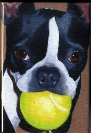 Boston terrier cute dog art magnet, boston terrier gift,boston terrier art magnet, dog breed gift