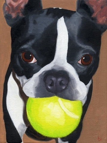 Boston Terrier Dog Art print, Boston terrier gift, Boston terrier wall decor, Boston terrier with tennis ball, boston terrier home decor