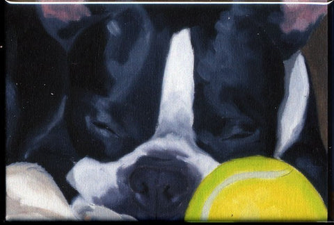 Boston terrier sleeping with a ball cute dog art magnet