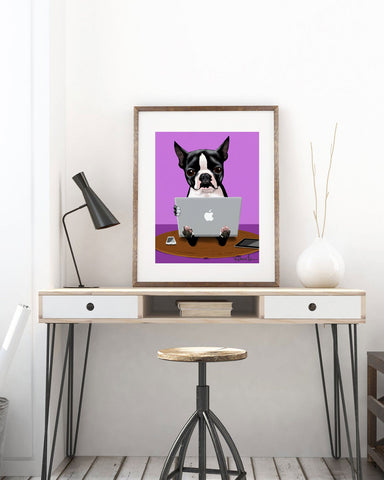 Boston Terrier loves his macbook