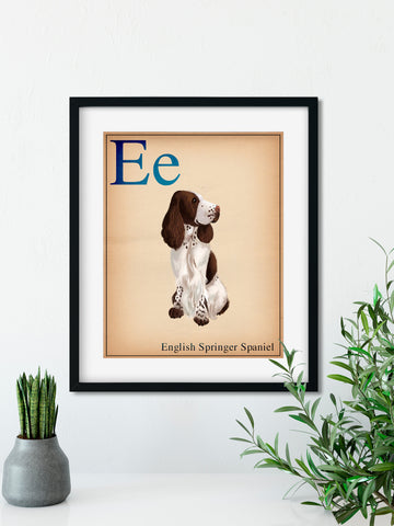 English Springer Spaniel gift, Dogs A-Z, English Springer Spaniel art, English Springer Spaniel wall art print, wall decor, dog art print