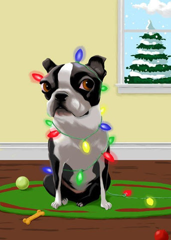 Boston Terrier gift, boston terrier art, Tangled in Christmas Lights, boston terrier wall art print