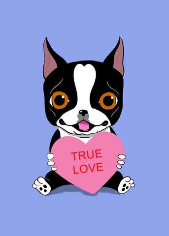 Boston Terrier Holding a Valentine Heart dog art customizable