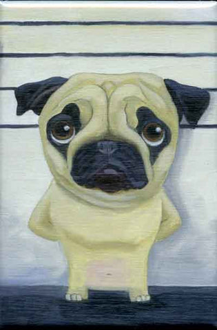 Pug  Line Up Dog Art Magnet