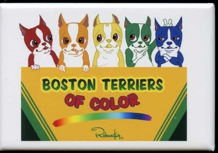 Colored Boston Terrier Crayon Dog Art Magnet