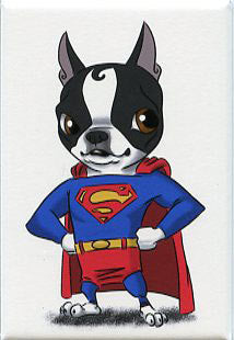 Boston terrier gift, Superman Boston terrier art, Boston Terrier magnet