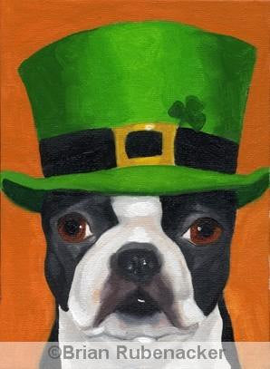 101 Boston Terriers wearing hats Number 24 Boston Terrier  dog art PRINT