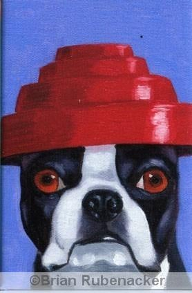 Boston Terrier gift, boston terrier wearing Devo Hat magnet, dog art magnet, 80's music, boston terrier magnet