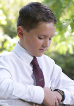 LDS Baptism Tie with CTR Oval Tie Pin (BTP-Navy Burgundy)