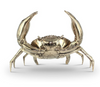 buy Mr Pinchy Sea Crab - Small online
