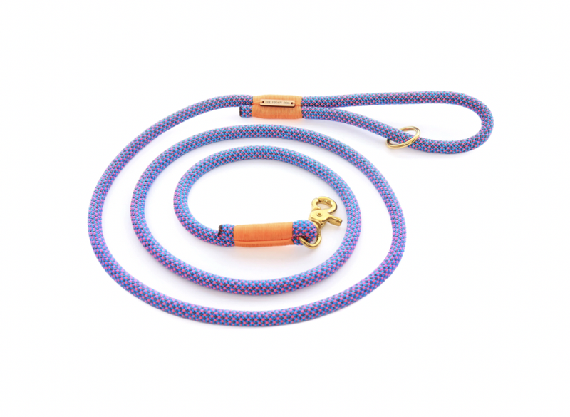 The Foggy Dog - Neon Tetra Climbing Rope Dog Leash