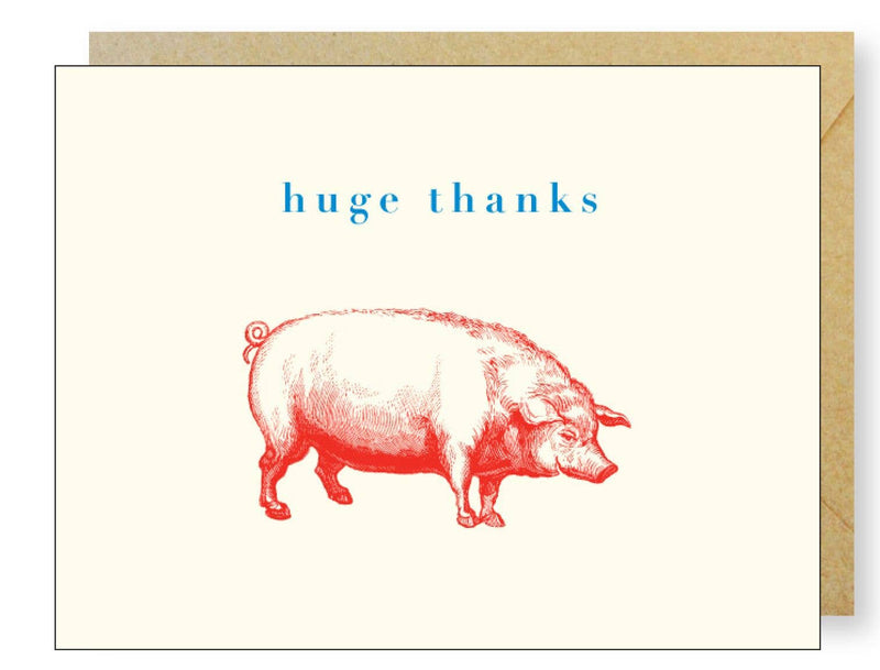 J.Falkner Cards - Happy Pig Thanks Boxed Set