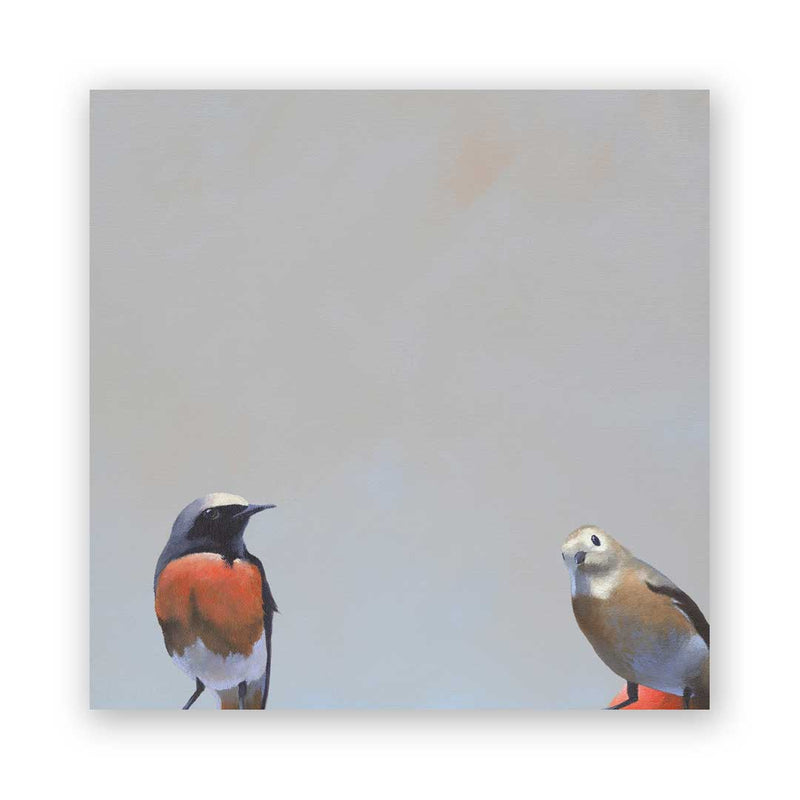 The Mincing Mockingbird - 8 x 8  Redstart Pair Panel Wings on Wood