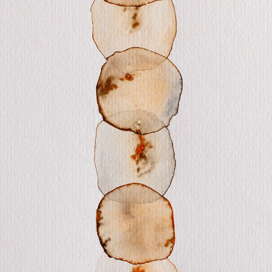 Agate Brown Totem II
