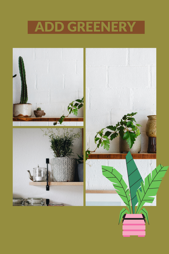 Add plants to your open shelve