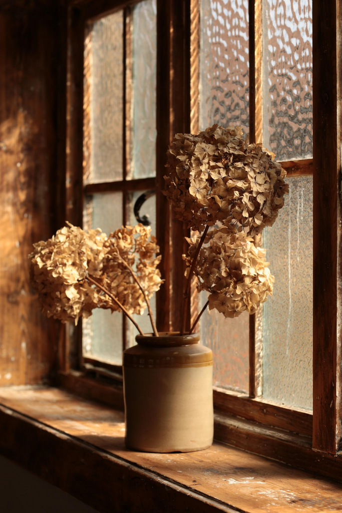 autumn dried flowers