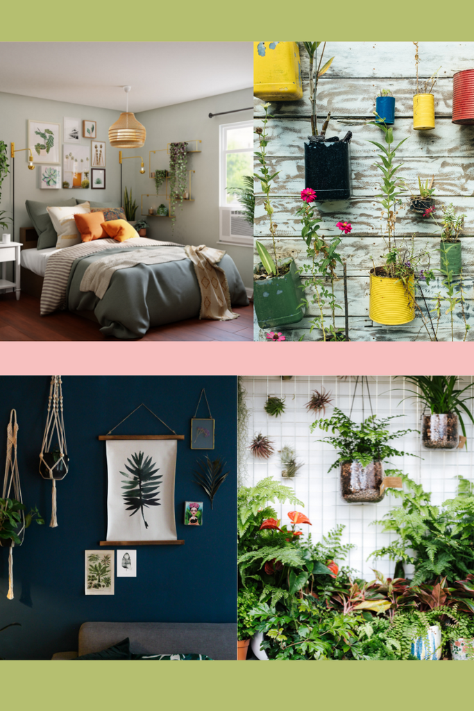 a selection of plants hanging on a wall