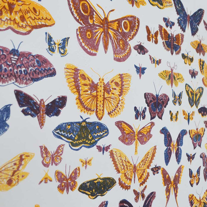 British Moths Riosgraph Print