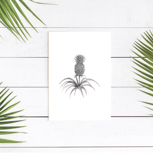 'Pineapple' signed A3 Giclee Print