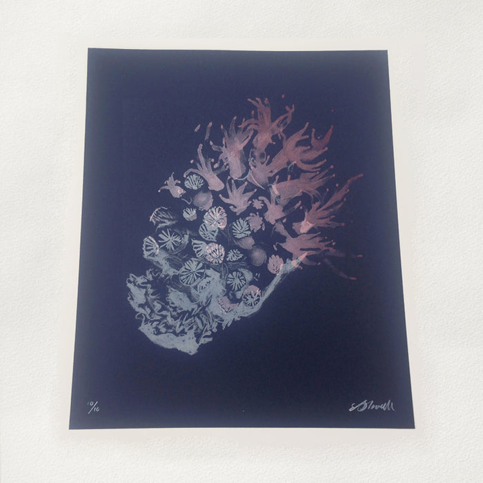 Coral Polyp screenprint
