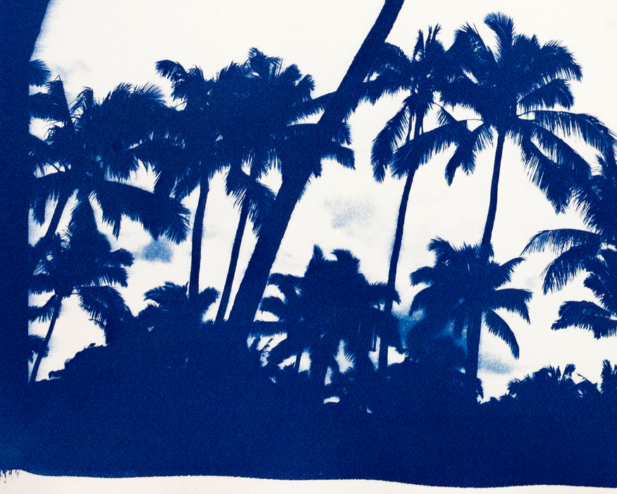 """Acapulco Palm Sunset"" with Blue Border/ Hand-Printed Cyanotype on Watercolor Paper / 70x100cm / Limited Edition"