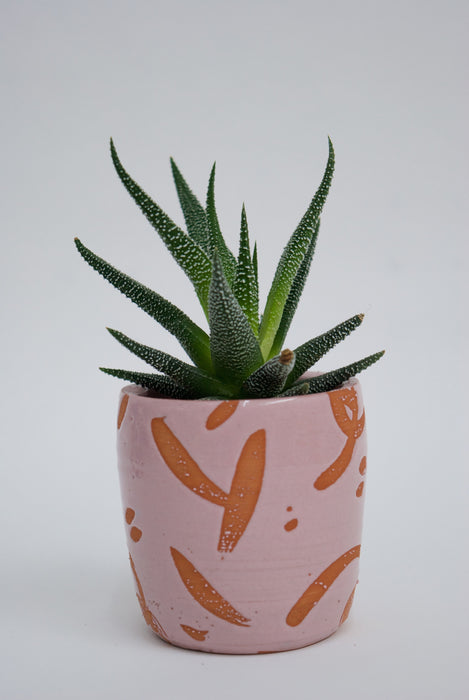 Splash Small Plant Pot