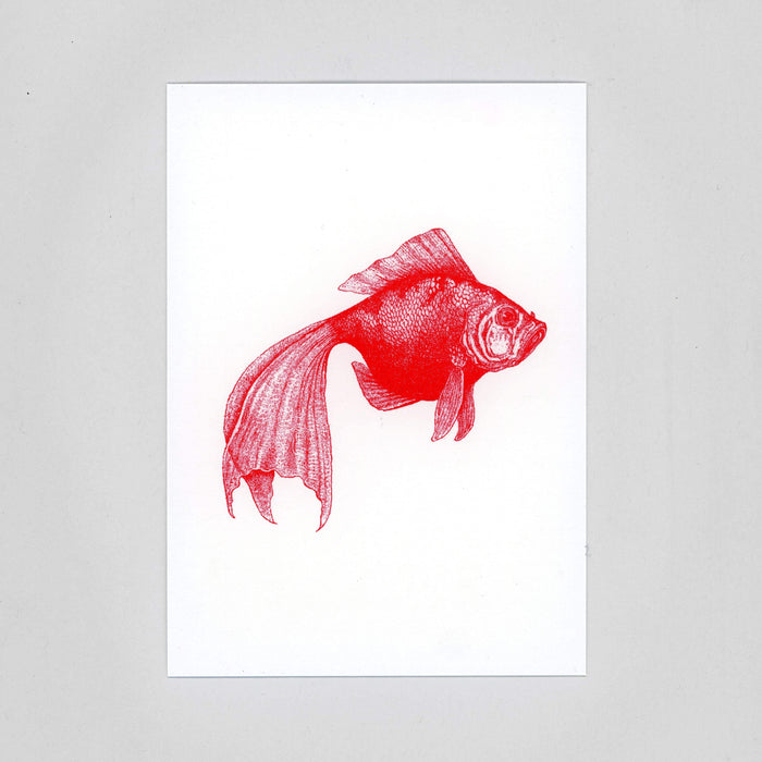 Red Zoo | 4 Monochrome Risograph Postcards