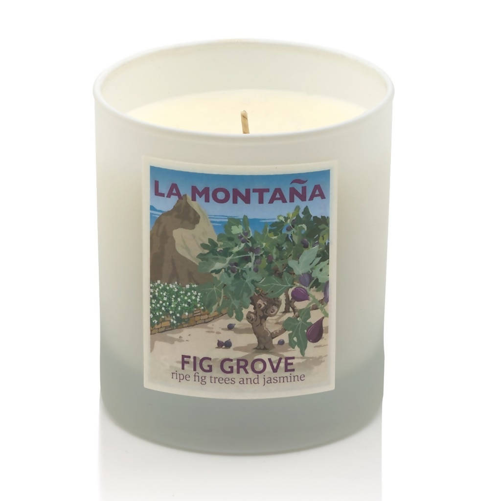 Fig Grove Scented Candle